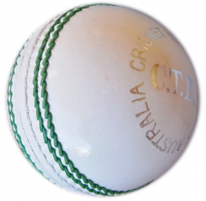 Durable bat friendly white cricket ball, used in T20 matches.